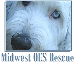 Minnesota- Midwest OES Rescue: Good Nutrition