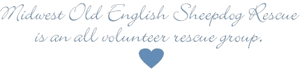 Midwest Old English Sheepdog Rescue is an all volunteer rescue group